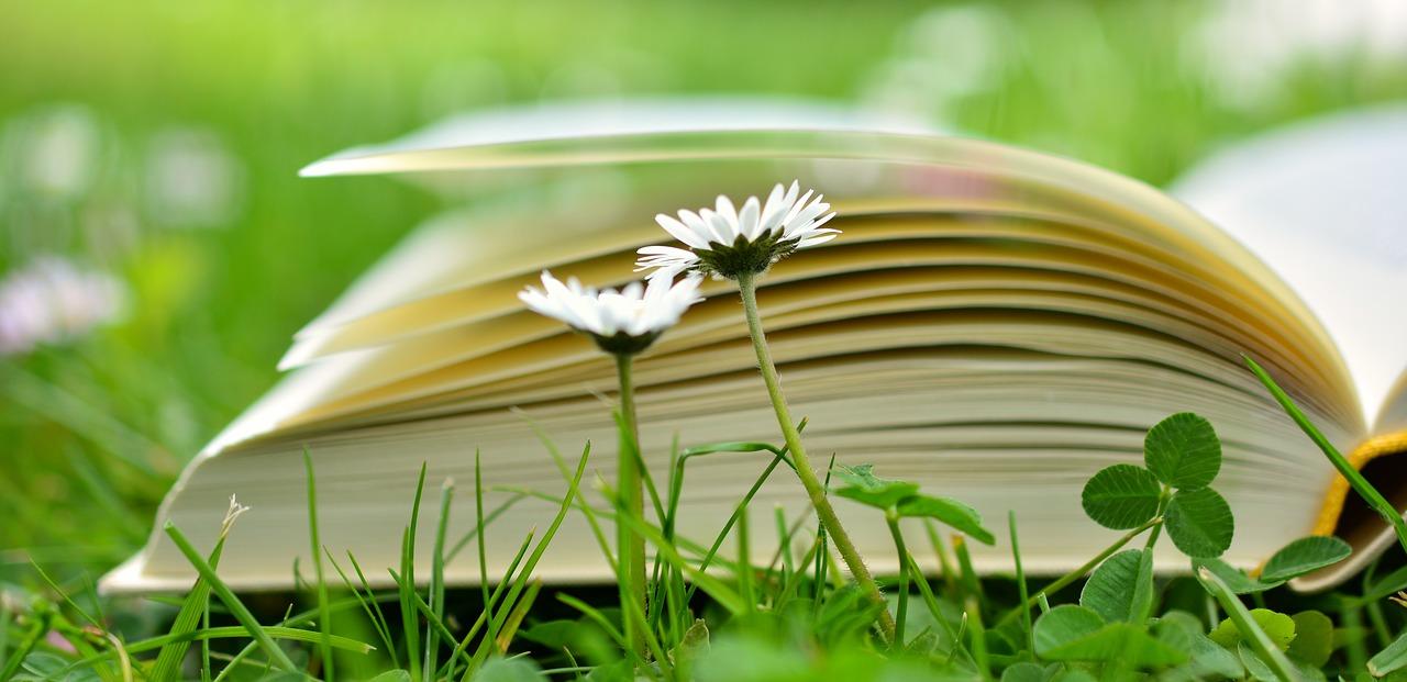 Libros de salud y bienestar